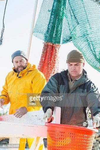 Mannen aan het werk op commerciële garnalen boot uitladen korf : Stockfoto