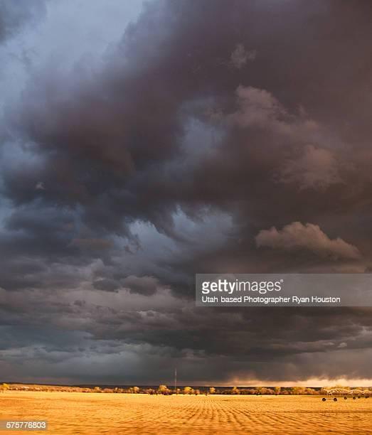 Menacing Clouds over Cut Field