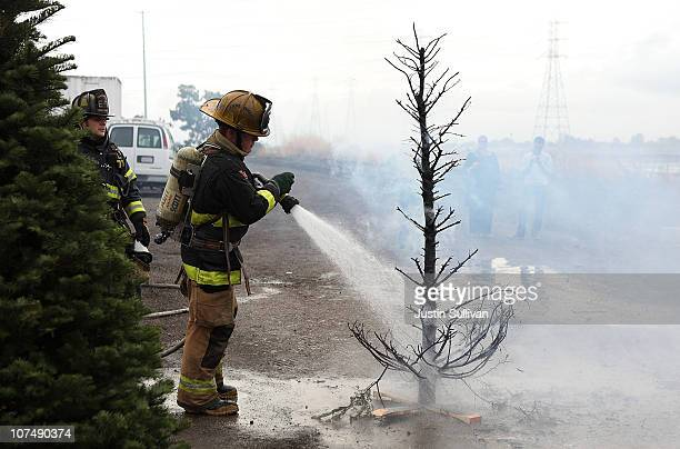 Menlo Park fire department cadet extinguishes a Christmas tree fire during a holiday safety live fire demonstration on December 9 2010 in Menlo Park...