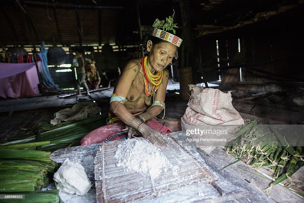 A Mentawanese woman Bai LauLau prepares sagoo to cook during Inauguration Ritual preparation for Aman Gotdai as a New Sikerei on May 25 2014 in Butui...