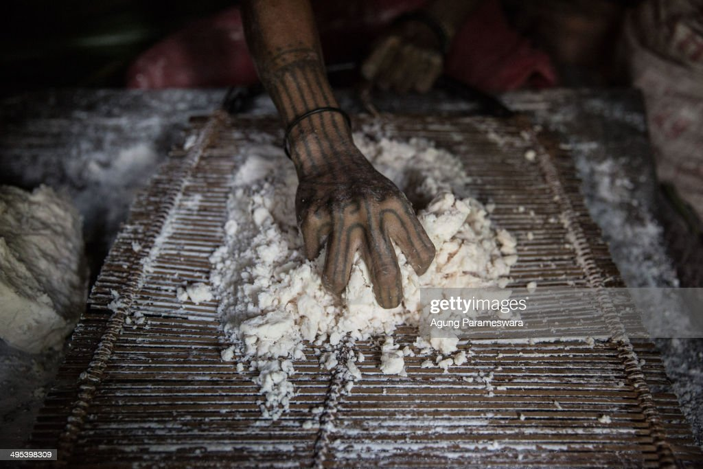 Mentawanese woman Bai LauLausqueezes sagoo to cook during Inauguration Ritual preparation for Aman Gotdai as a New Sikerei on May 25 2014 in Butui...