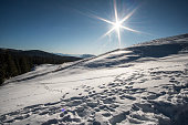 South Tyrol, Italy.
