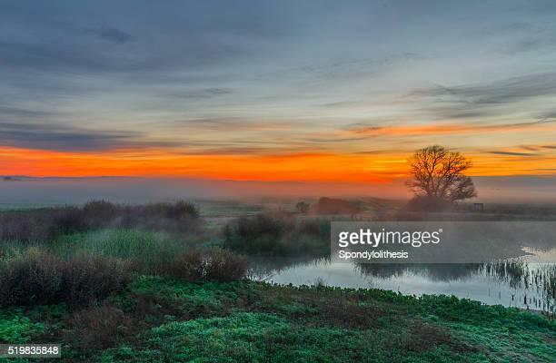 Merced National Wildlife Refuge at Sunrise, California, USA