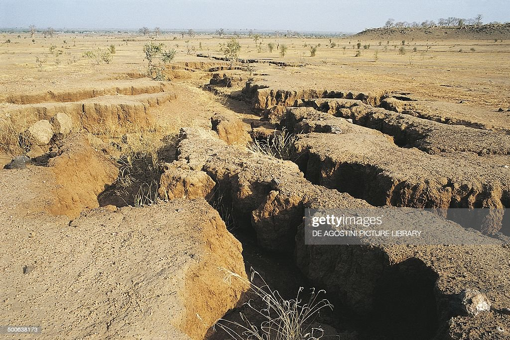 Merigots furrows formed by erosion Sahel desert Mauritania