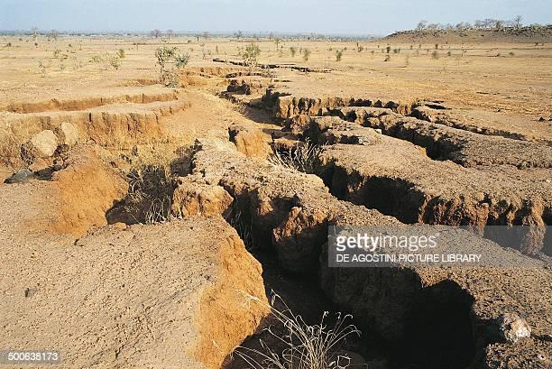 Merigots furrows formed by erosion Sahel desert Mauritania