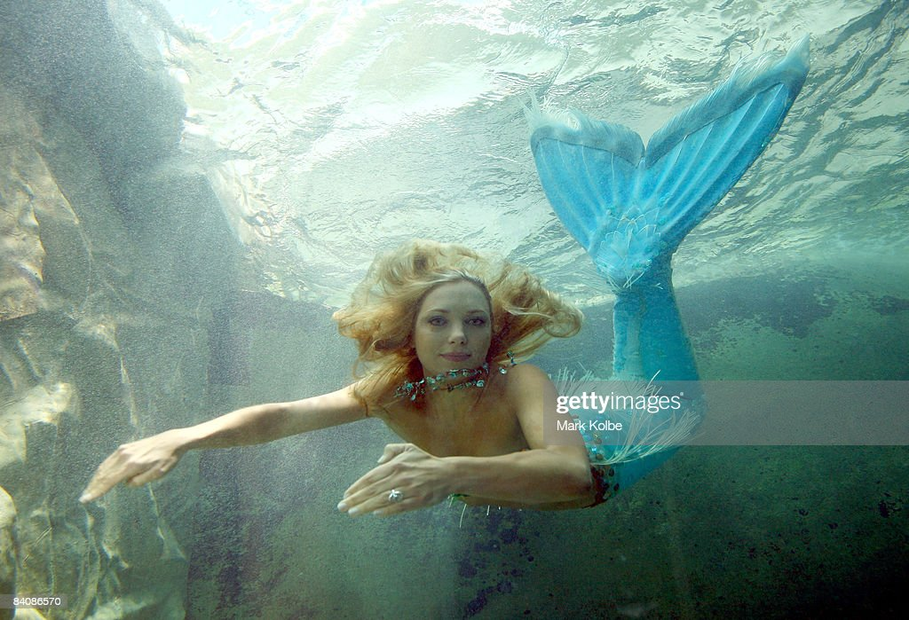 'Mermaid' Hannah Fraser swims in the new exhibit at Sydney Aquarium built to house dugongs Pig and Wuru on December 19, 2008 in Sydney, Australia. The exhibit will open to the general public on December 19, featuring the 2 orphaned marine animals which have been relocated from Sea World.