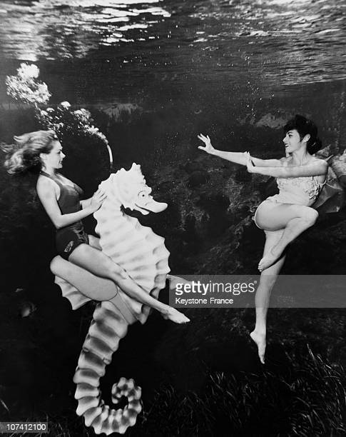 Mermaids Underwater With A Sea Horse During Fifties Ending