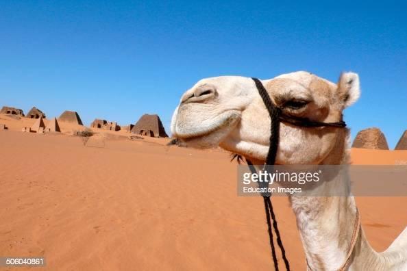 Meroe Archeological Site Nubia Sudan North Africa