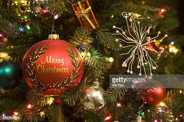 Merry Christmas bulb on Christmas Tree