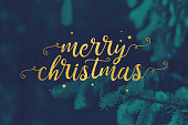 Gold Merry Christmas Script and Stars with Evergreen Branches Background