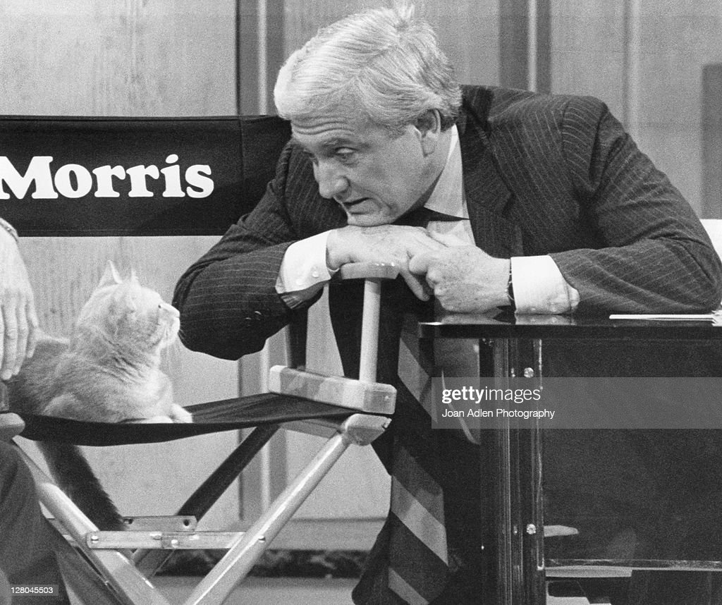 <a gi-track='captionPersonalityLinkClicked' href=/galleries/search?phrase=Merv+Griffin&family=editorial&specificpeople=206126 ng-click='$event.stopPropagation()'>Merv Griffin</a> interviews Morris the Cat on June 12, 1985 on The <a gi-track='captionPersonalityLinkClicked' href=/galleries/search?phrase=Merv+Griffin&family=editorial&specificpeople=206126 ng-click='$event.stopPropagation()'>Merv Griffin</a> Show in Los Angeles, California.