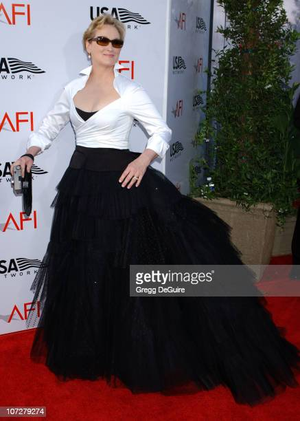 Meryl Streep during USA Network Presents 2004 AFI Lifetime Achievement Award A Tribute to Meryl Streep Arrivals at The Kodak Theater in Hollywood...
