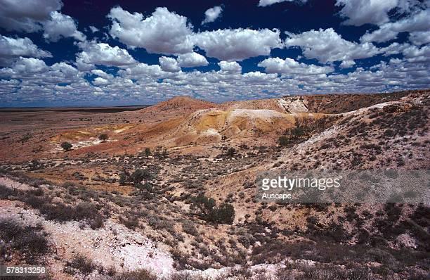 Mesa country after rain Sturt National Park far western New South Wales Australia