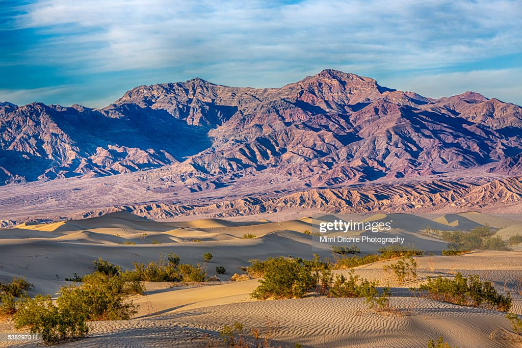 Mesquite Dunes And Mountains