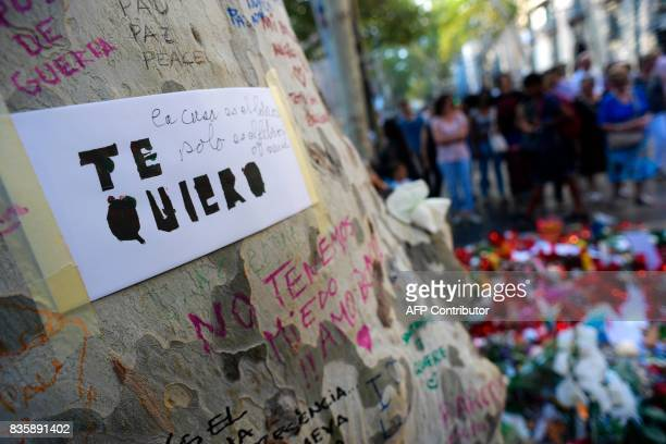 A message reading 'I love you' is displayed on a tree a people stand next to flowers candles and other items set up on the Las Ramblas boulevard in...