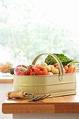Metal basket of assorted vegetables on kitchen counter
