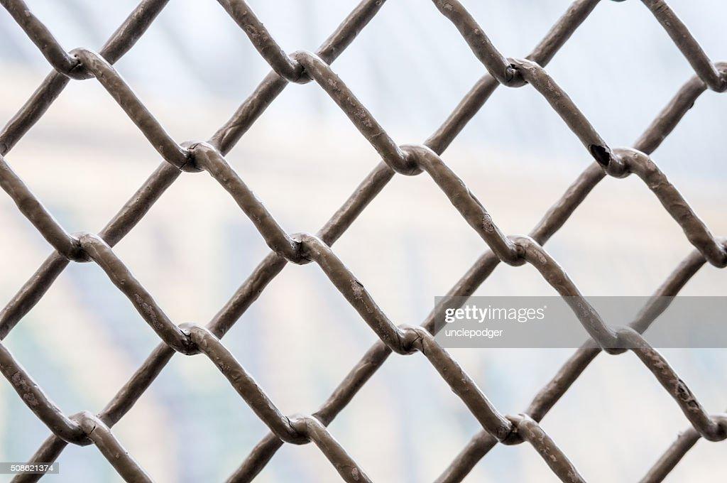 Metal lattice : Stock Photo