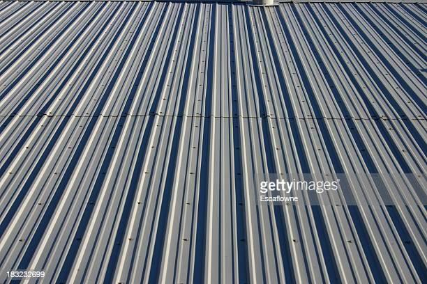 Metal roof #2