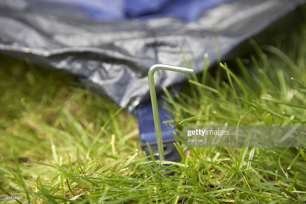 metal tent peg partially hammered into ground