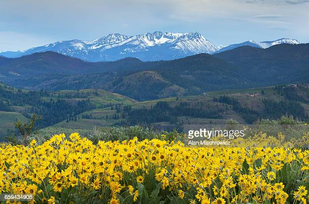 Methow Valley North Cascades