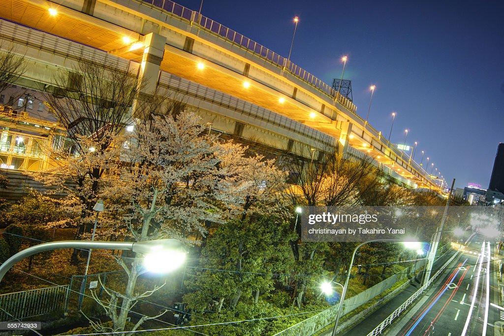 Metropolitan Expressway Route 9 Fukagawa Line