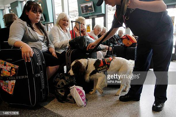Metropolitan specialist dog 'Chester' sniffs luggage in the run up to the London 2012 Olympic Games at Victoria Coach Station on July 12 2012 in...