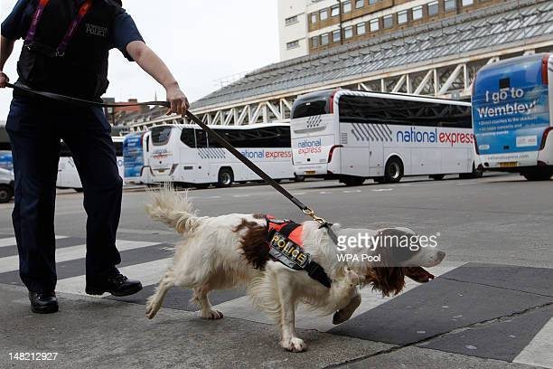 Metropolitan specialist dog 'Chester' walks across the coach station in between sniffing luggage in the run up to the London 2012 Olympic Games at...
