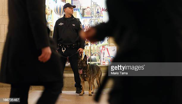 Metropolitan Transit Authority Canine Unit Police Officer Rozsay and dog Seren keep watch during the morning commute in Grand Central Terminal on...