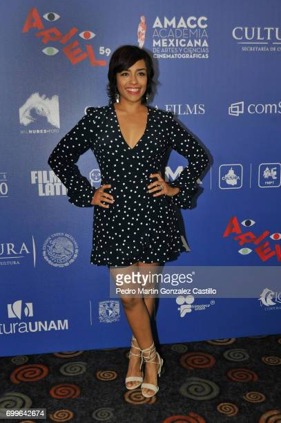 Mexican actress Adriana Paz poses during the 59th Ariel Awards Nominees Event at Fiesta Americana Hotel on June 21 2017 in Mexico City Mexico