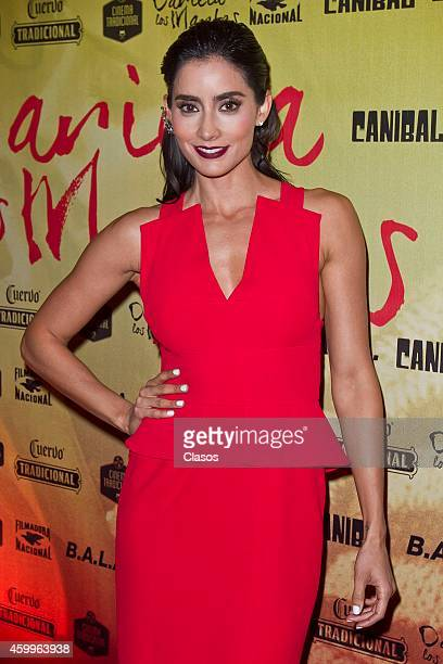Mexican actress Paola Nunez attends the red carpet of Mexican movie Dariela los Martes on December 04 2014 in Mexico City Mexico