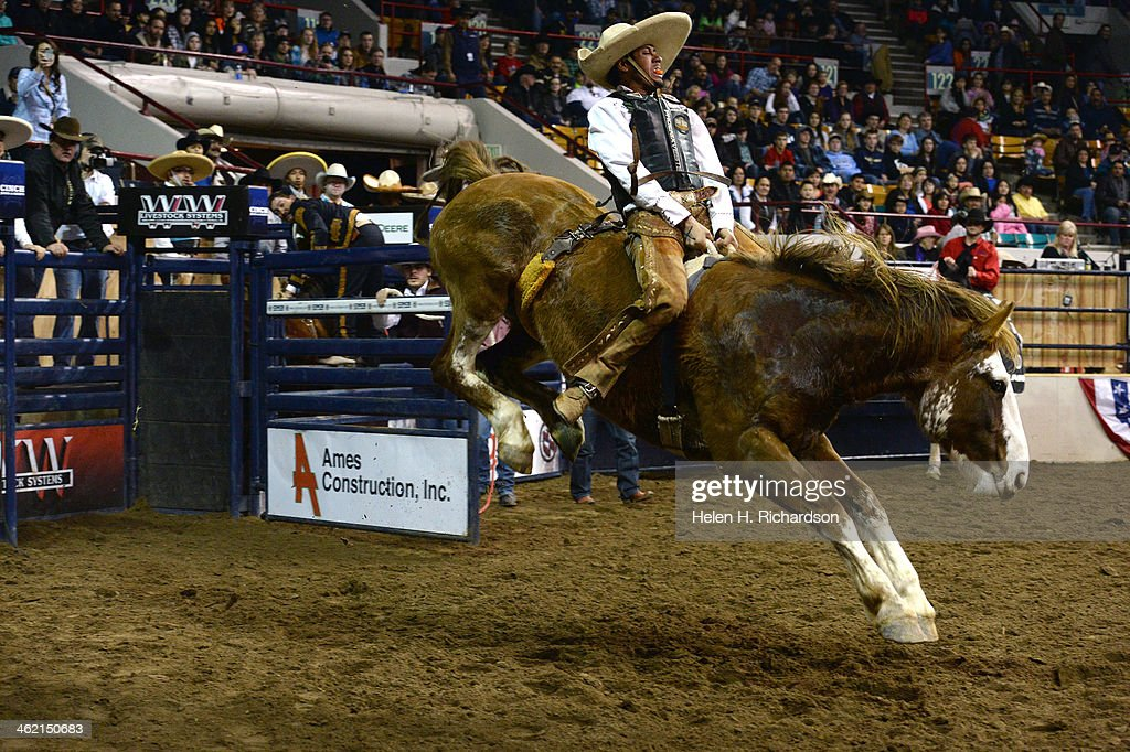 Mexican charro Carlos Perez from Ciudad Madera Chihuahua Mexico rides bareback during the bareback competition at the 20th Annual Mexican Rodeo...