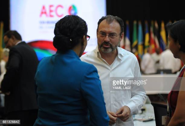 Mexican Foreign Minister Luis Videgaray attends the opening ceremony of the XXII Ordinary Meeting of the Council of Ministers of the Association of...
