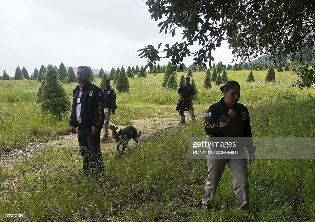 Mexican police officers look for evidence in the surroundings of a park in the municipality of Tlalmanalco, some 30 km southeast of Mexico City on August 22, 2013, where at least 7 bodies were discovered in a mass grave. Mexican authorities dug up the muddy mass grave and were investigating Thursday if the remains belong to 12 young people whose kidnapping in May shocked the capital. Mexico City's top prosecutor, Rodolfo Rios, said the remains of seven people have been recovered since the search began in a park on Wednesday and that workers are still digging for more bodies. The victims were kidnapped from a downtown bar in broad daylight on a Sunday morning three months ago in a case that raised concerns about security in Mexico City, which has been relatively immune from the country's drug cartel violence.