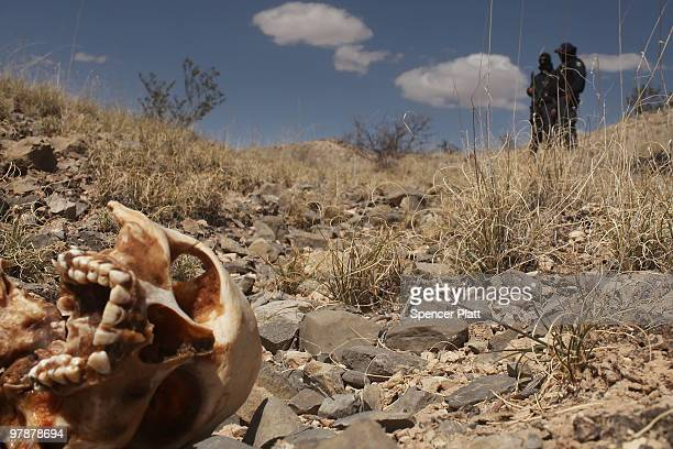 Mexican police stand beside a skull discovered with other remains in what is thought to be a large grave in the desert of victims of recent drug...
