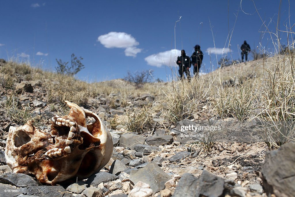 Mexican police stand near a skull discovered with other remains in what is thought to be a large grave in the desert of victims of recent drug violence on March 19, 2010 in the county ofJuarez, Mexico. The border city of Juarez has been racked by violent drug related crime recently and has quickly become one of the most dangerous cities in the world to live. As drug cartels have been fighting over ever lucrative drug corridors along the United States border, the murder rate in Juarez has risen to 173 slayings for every 100,000 residents. President Felipe Calderon�s strategy of sending 7000 troops to Juarez has not mitigated the situation. With a population of 1.3 million, 2,600 died in drug-related violence last year and 500 so far this year, including two Americans who worked for the U.S. Consulate last weekend as they returned from a children�s party.
