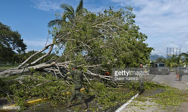 Mexican soldiers remove trees from the main boulevard in Manzanillo state of Colima after Hurricane Patricia hit the shore of neighbouring Jalisco...
