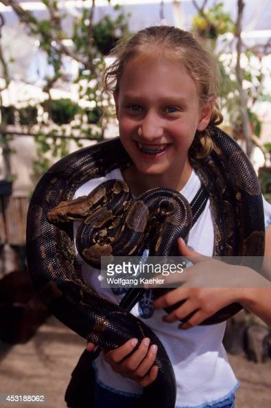 Mexico Baja California La Paz Serpentarium Girl With Boa Constrictor Model Release 200209237
