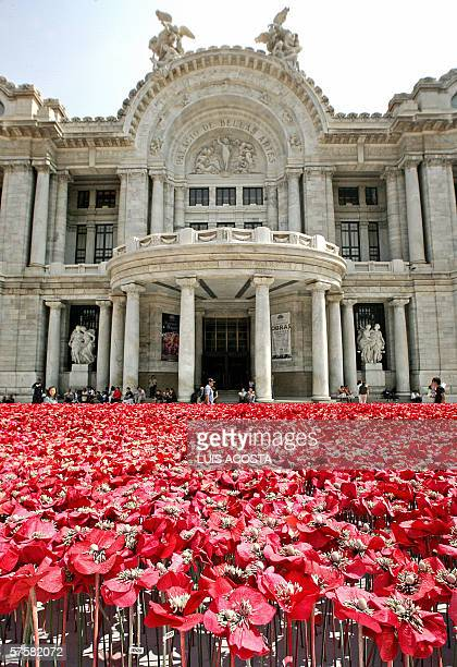 SINTESIS Picture of Mexico City's Fine Arts Palace 10 May 2006 in front of where 60000 artificial poppies have been placed by the Japanese brand...