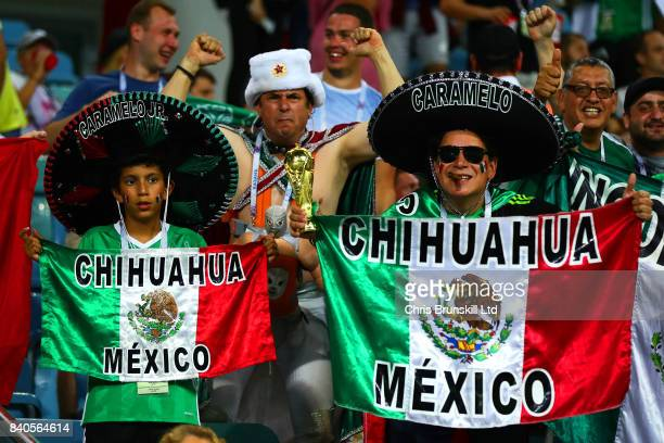 Mexico fans support their team during the FIFA Confederations Cup Russia 2017 SemiFinal match between Germany and Mexico at Fisht Olympic Stadium on...