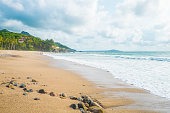 Mexico, Nayarit, Sayulita, Pacific Coast, beach