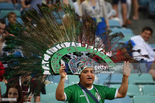 A Mexico supporter cheers before the 2017 FIFA Confederations Cup semifinal football match between Germany and Mexico at the Fisht Stadium in Sochi...