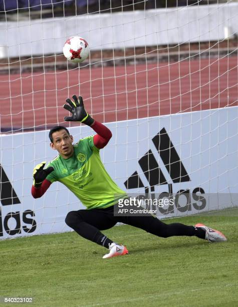 Mexico's national football team goalkeeper Rodolfo Cota takes part in a training session ahead of their World Cup qualifier against Panama at the...