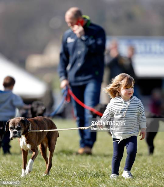 Mia Tindall walks her mother Zara Phillips's boxer dog 'Spey' as she attends the Gatcombe Horse Trials at Gatcombe Park on March 26 2017 in Stroud...