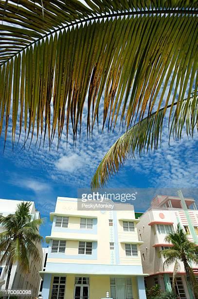 Miami Beach Art-déco-Motiv Palmen und blauem Himmel