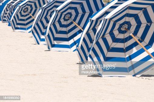 Miami Beach Rows of Blue and White Striped Umbrellas