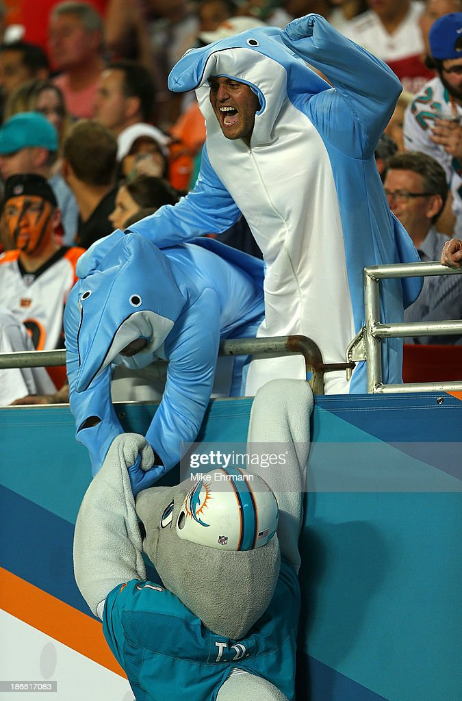 Miami Dolphins fans cheer with the mascot during a game against the Cincinnati Bengals at Sun Life Stadium on October 31, 2013 in Miami Gardens, Florida.