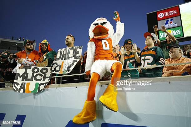 Miami Hurricanes fans and mascot Sebastian the Ibis cheer their team on in the second quarter of the Russell Athletic Bowl against the West Virginia...