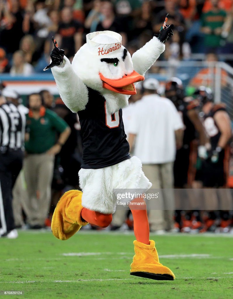 Miami Hurricanes mascot Sebastian celebrates during a game against the Virginia Tech Hokies at Hard Rock Stadium on November 4, 2017 in Miami Gardens, Florida.