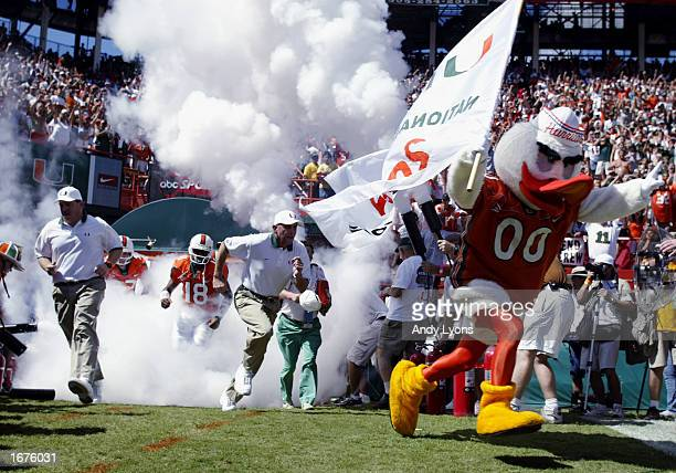Miami Hurricanes mascot Sebastian the Ibis leads the team onto the field before the game against Florida State on October 12 2002 at the Orange Bowl...
