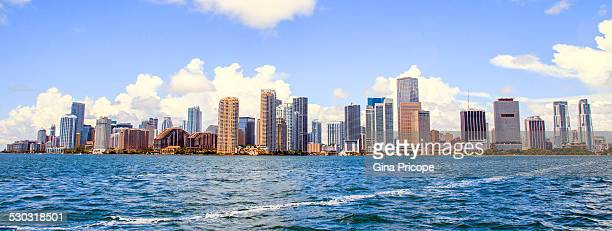 Miami panoramic view.
